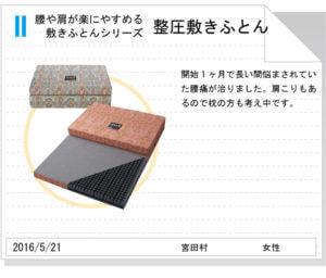 整圧敷きふとんtegami191