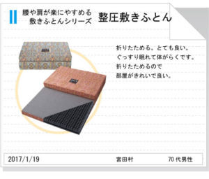 整圧敷きふとんtegami203
