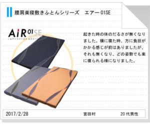 Air01SE