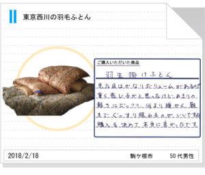 東京西川羽毛ふとん238