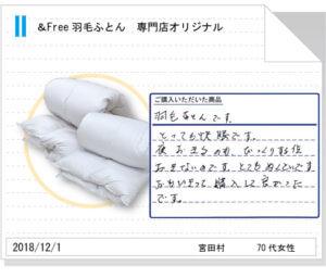 東京西川羽毛ふとん270