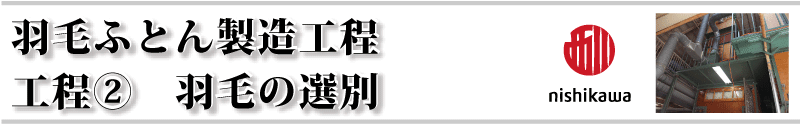 西川羽毛の選別