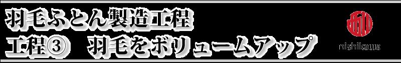 西川の羽毛ボリュームアップ